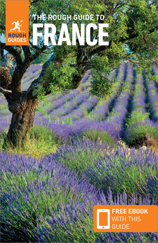 France Rough Guide 15e