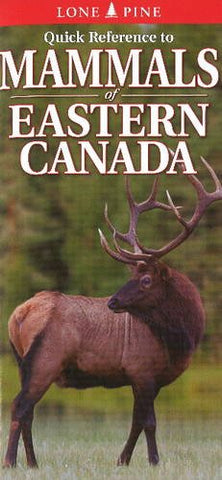 Quick Reference to Mammals of Eastern Canada