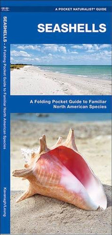 Seashells:  A Pocket Naturalist Guide