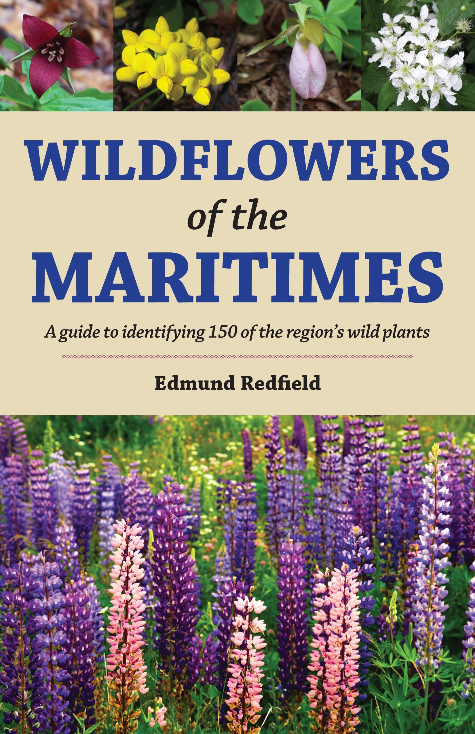 Wildflowers of the Maritimes: A guide to identifying 150 wild plants