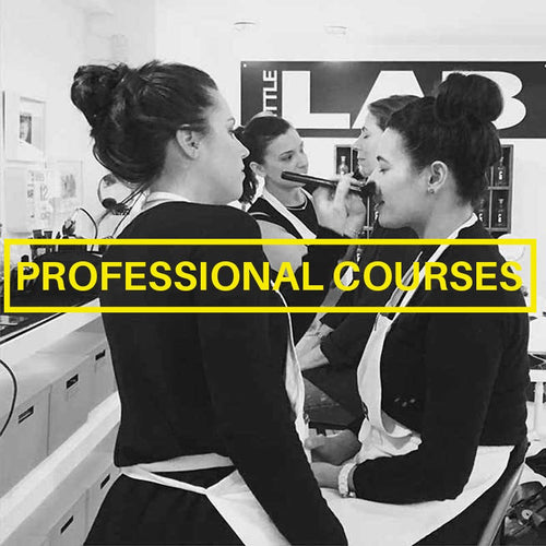 Professional 4 week course - littlelabmakeup