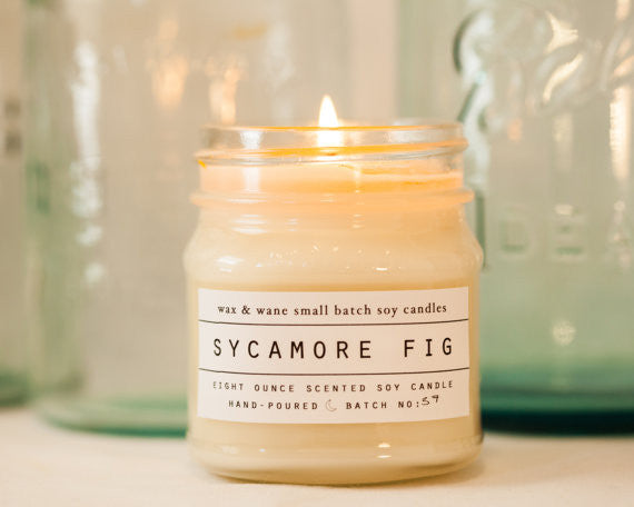 Sycamore Fig Soy Candle