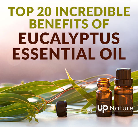 Top 20 Incredible Benefits of Eucalyptus Essential Oil
