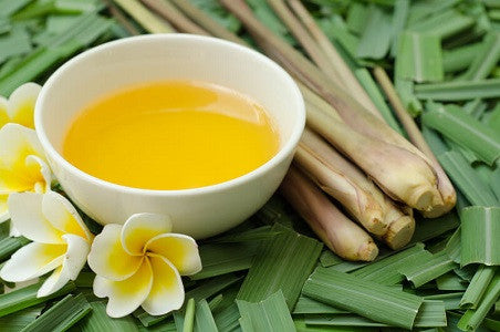 Citronella Oil Benefits & Uses