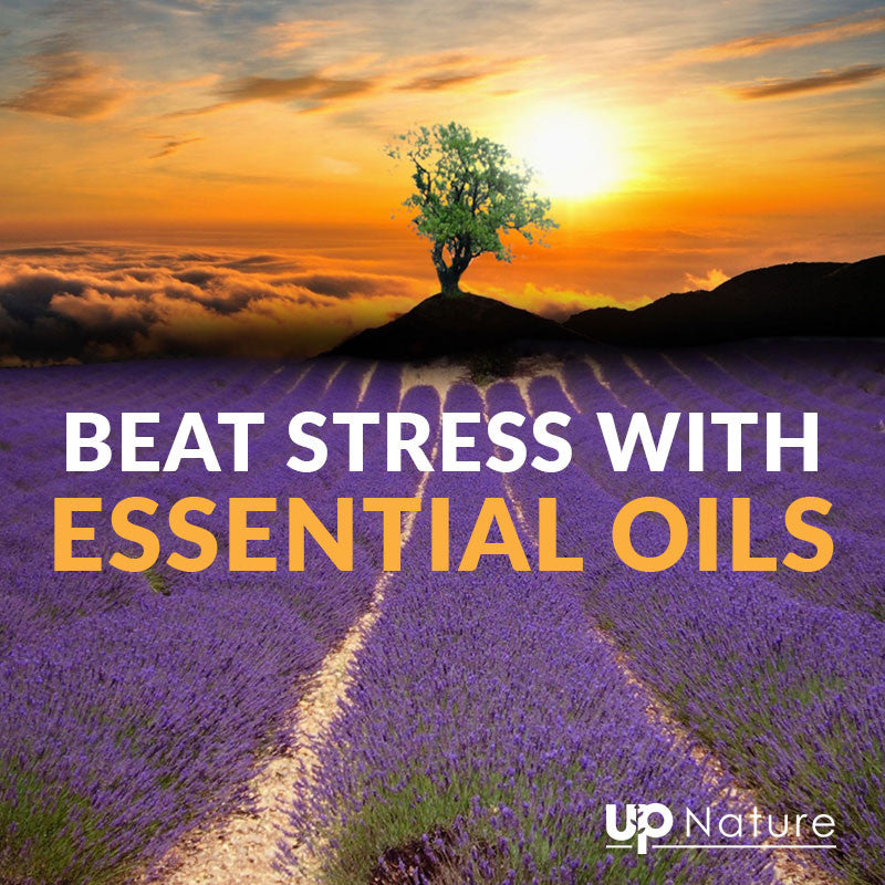 Top 17 Best Essential Oils for Stress and Anxiety | UpNature