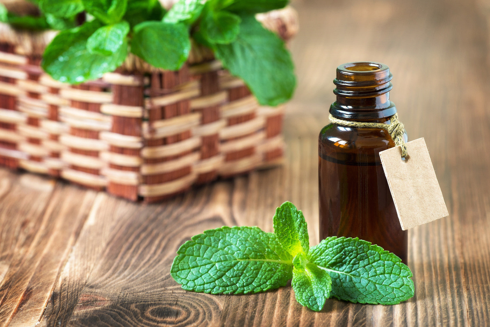 What are the medicinal properties of peppermint