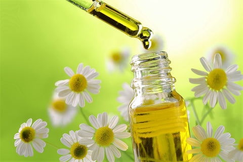 Roman Chamomile Essential Oil for Restless Leg Syndrome