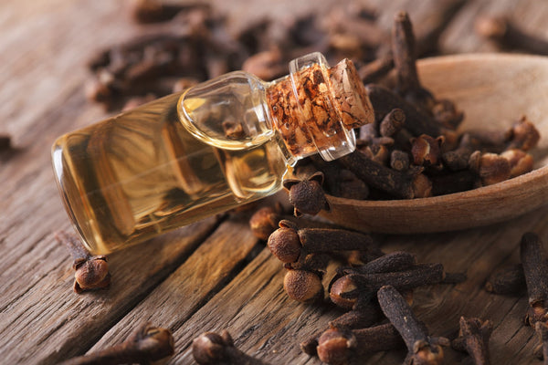 Clove Essential Oil for Colds and Flu Relief