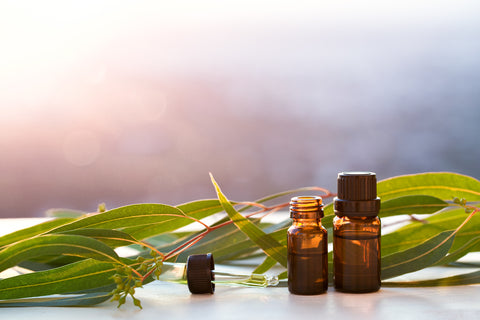 Eucalyptus leaves sit on a table with two small amber-colored bottles filled with oil