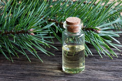 A small glass bottle with a cork top sits on a wooden table with pine leaves