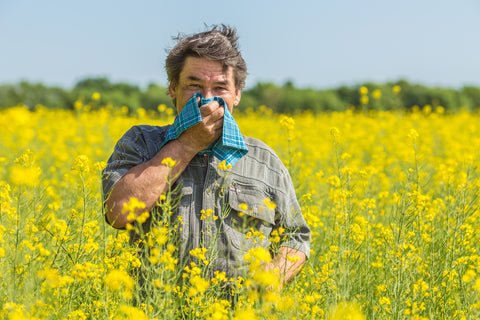 Man stands in a field of yellow flowers holding a handkerchief over his face