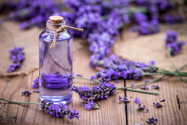 A glass bottle with a cork top sits on a wooden table with lavender surrounding it