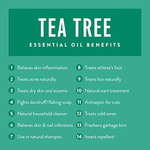 Tea Tree Melaleuca Oil 4 OZ - For Diffuser or Skin - Skin Tag Removal, Nail Fungus, Great for Hair and Scalp - 100% Pure, Undiluted & Unfiltered - Use to Make Soap, Cream, Shampoo & Face And Body Wash