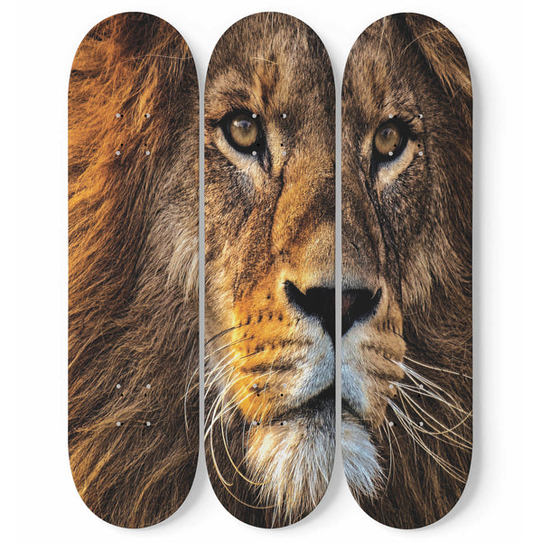 Lion Skateboard Wall Art Decor Safari Animal Face Fierce Courage Interior Room Decoration Modern Design Home Gift