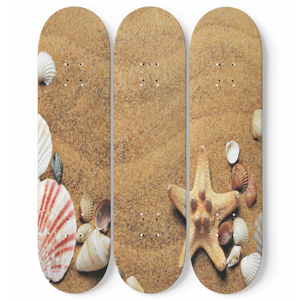 Seashells Starfish Skateboard Wall Art Set Of 3 | 3 Piece Wall Art Prints | Tropical Photo On Wood | Wood Wall Panel | Interior Home Decoration | Modern Room Decor