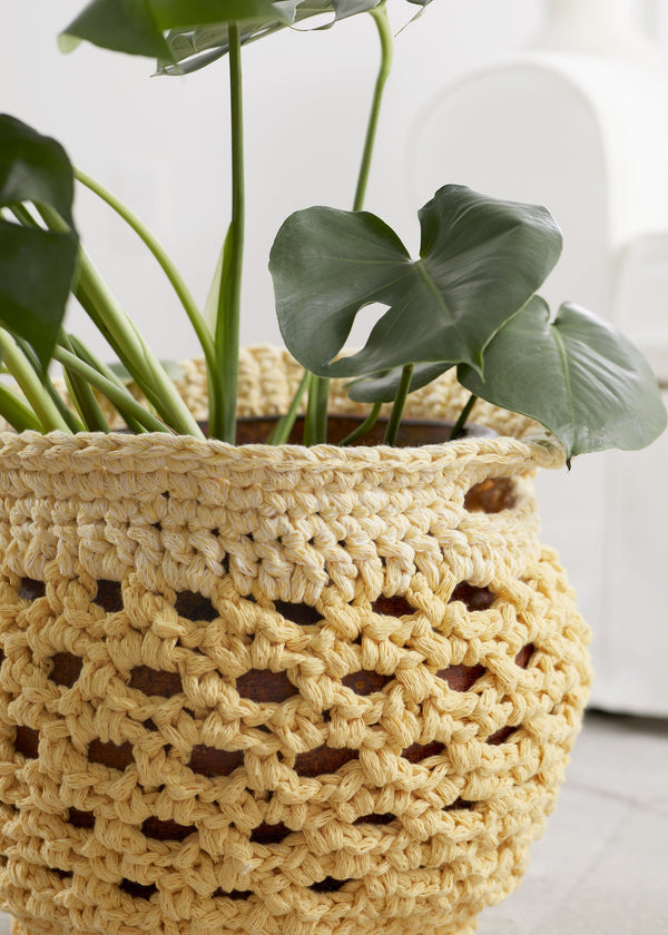 Sunshine Plant Cozy