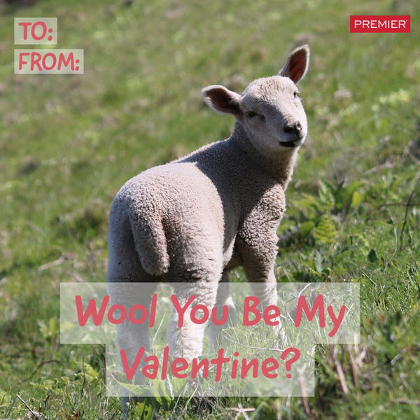 Free Valentine - Wool You Be My Valentine?