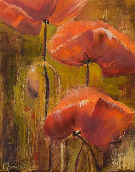 Flander's Poppies #2
