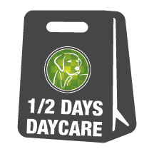 Daycare - Half Days - 20 Day Package (0-6 Hours)