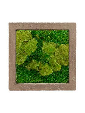 Moss Picture, Moos Bild, Slika iz Mahu, Green wall, moss wall, zelene stene, zelena stena, stena iz mahu, slika iz mahu, grüne wand, grüne wände, moos bild, vertical green design, indoor vertical green, moss wall, raumbegrünung