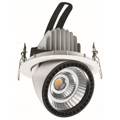 Living walls / Green walls LED Panasonic downlight 5000K 2680lm