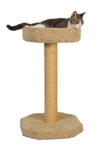 Molly & Friends Bed and Sisal Scratching Post