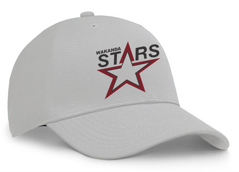 Wakanda Stars Flex Fit Baseball Grey Baseball Hat