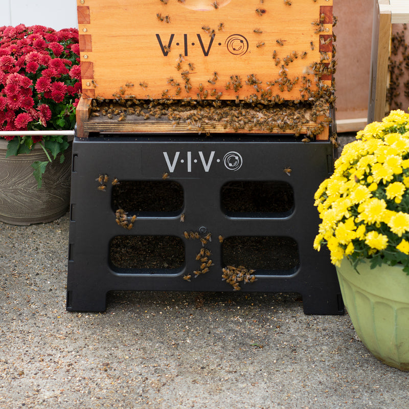BEE-HVST<br><br>Black Plastic Beehive Stand