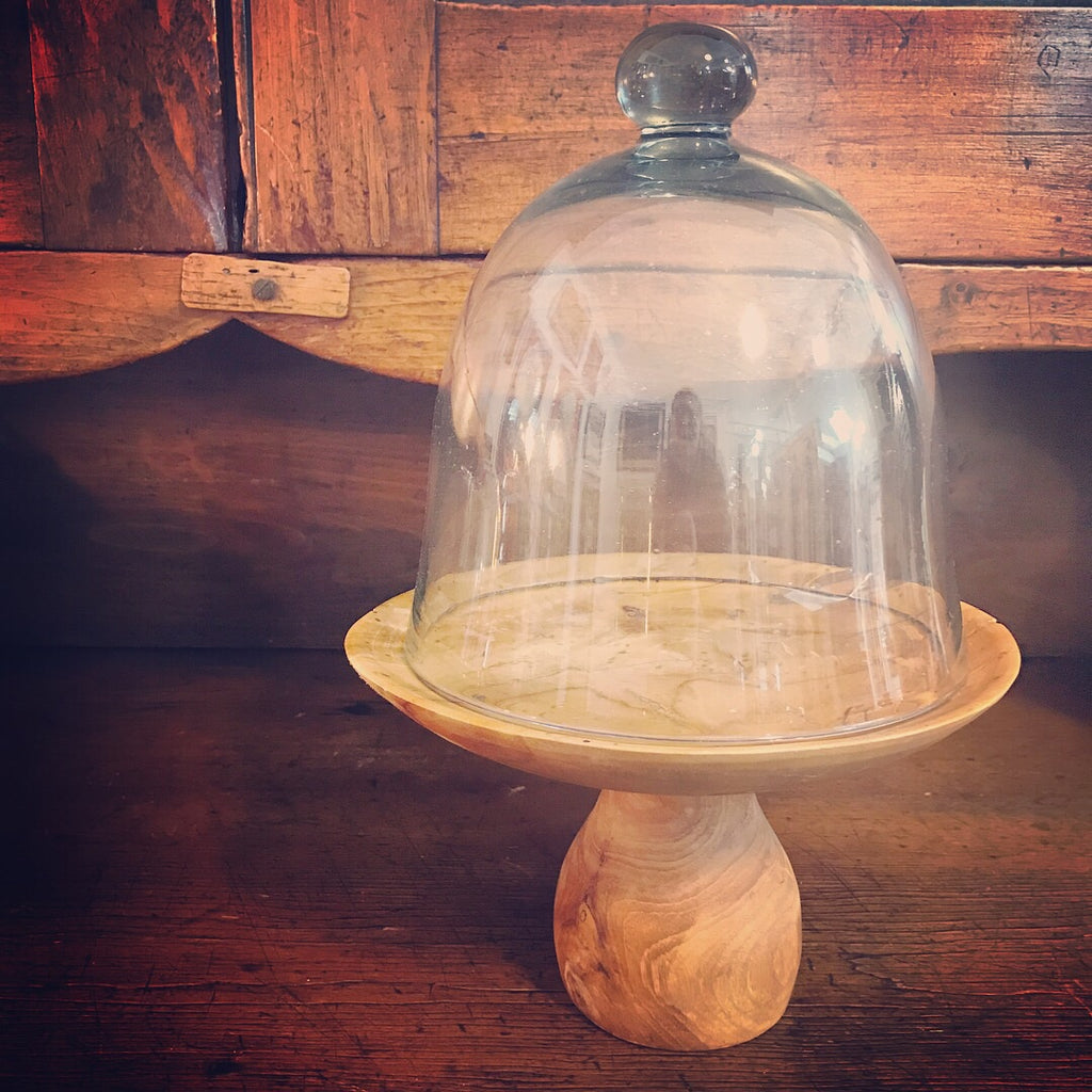 Glass Cloche with Wood Pedestal