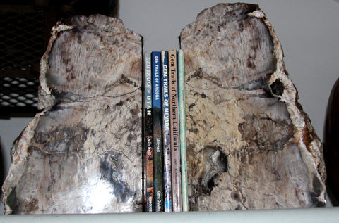 Large Petrified Wood Bookends - MtBakerTradingCompany.com
