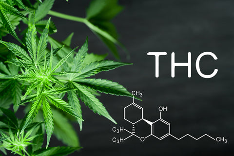 thc benefits cannabis craft products