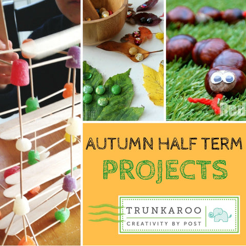 Autumn Half Term Projects