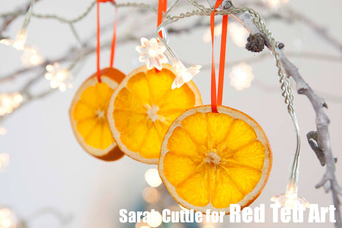 Dry Orange Christmas Decoration