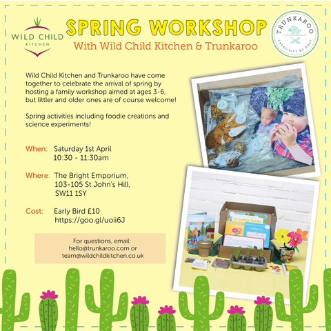 Spring Science Workshop