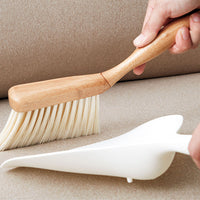 dustpan and brush cleaning set
