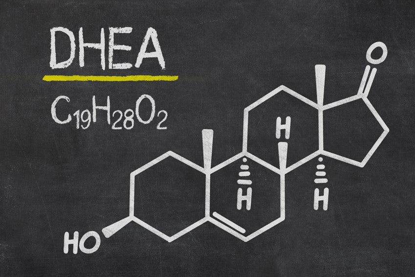DHEA_Testosterone_Support