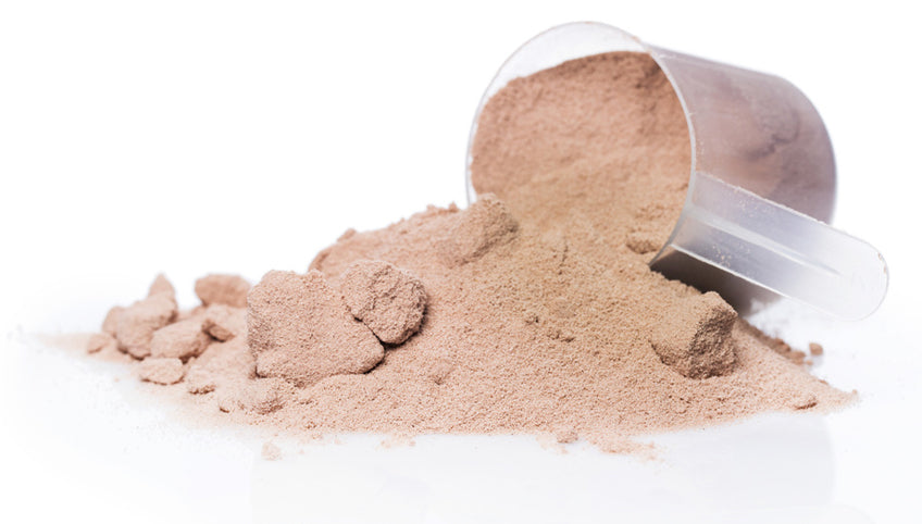 Chocolate Cacao Protein Powder