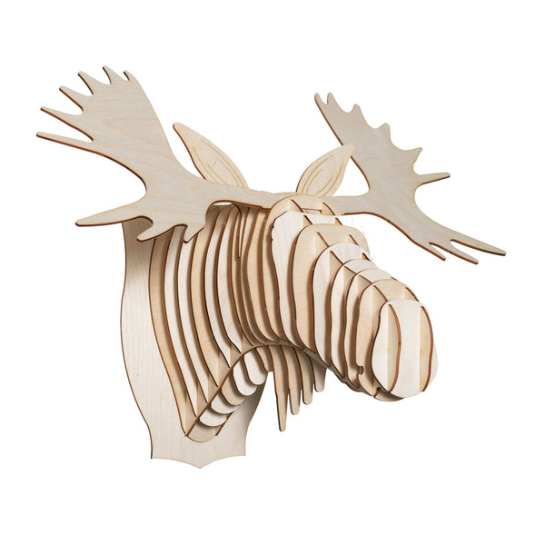 Fred the Birch Wood Moose Head
