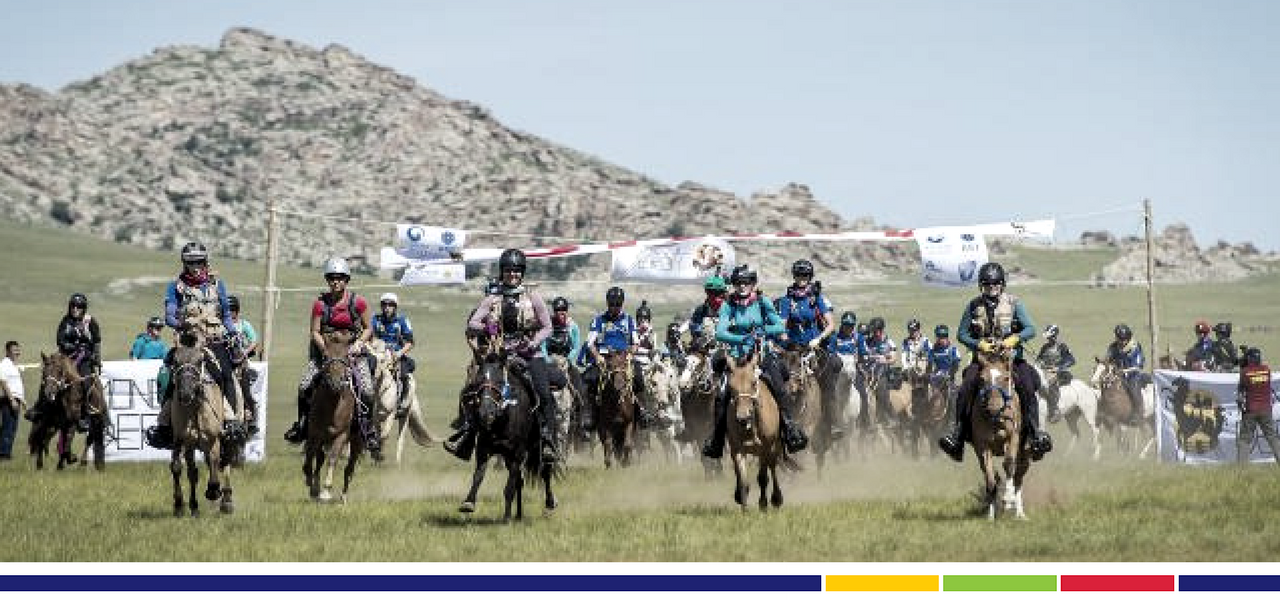 Elivar's Sally Toye takes on the Mongol Derby