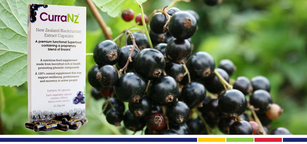 Team Elivar Recommends CurraNZ New Zealand Blackcurrant Extract Capsules