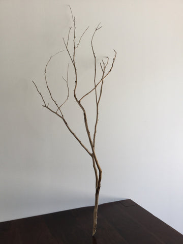 Delicate Driftwood Branch - River Valley Woods Company - 1
