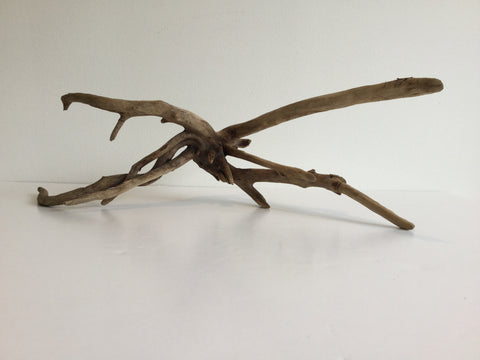 Little Squid Driftwood Sculpture - River Valley Woods Company - 1