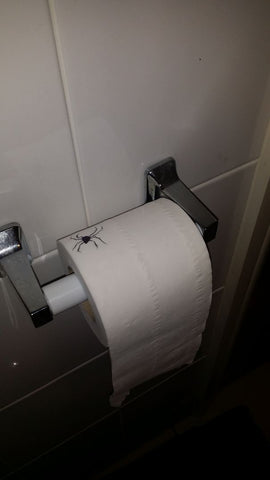 April Fools Spider On Toilet paper Prank
