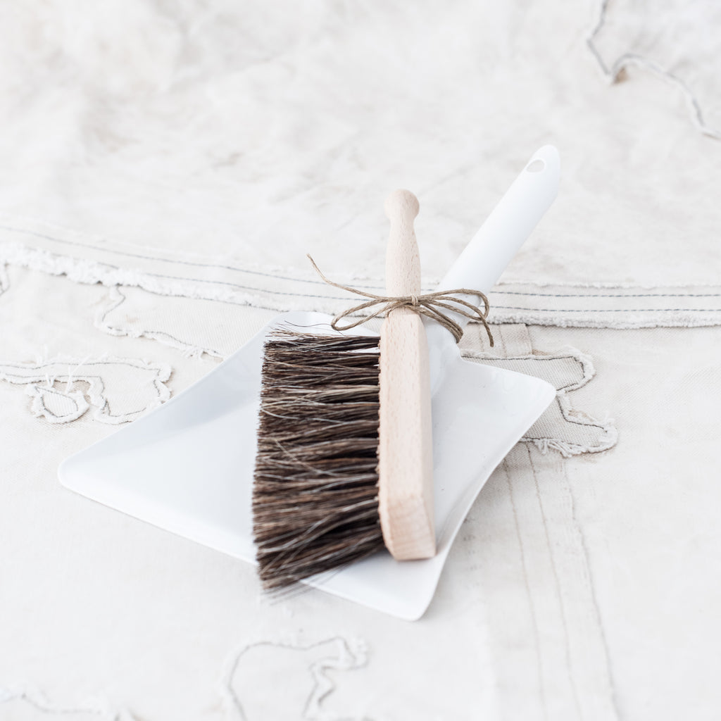 Mini Dust pan and Brush Set