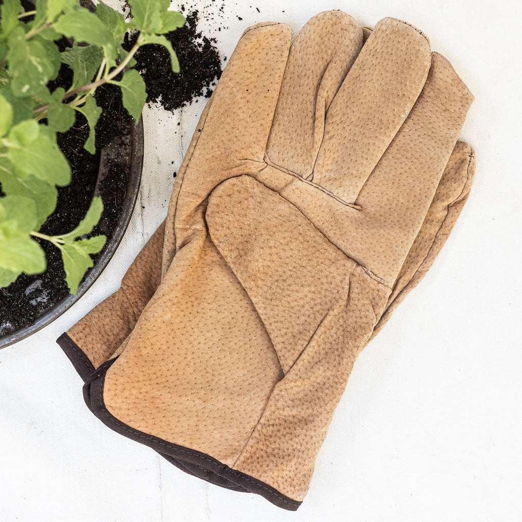 Leather Gardening Glove - The Lost + Found Department