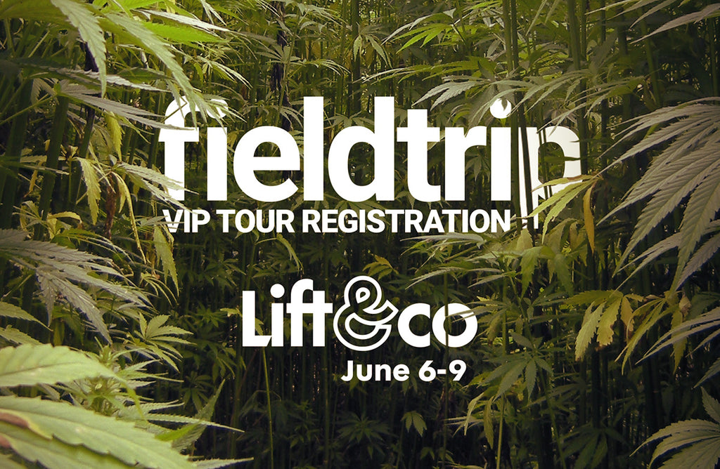Let us take you on a Fieldtrip VIP Tour at the Lift&co Expo 2019!