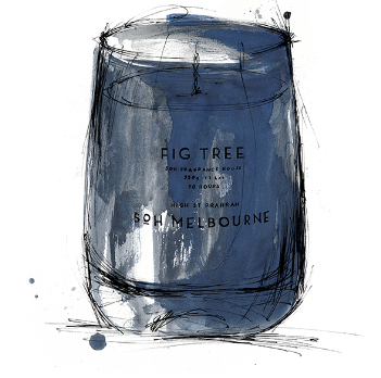 SOH Fig Tree Matte Navy Candle