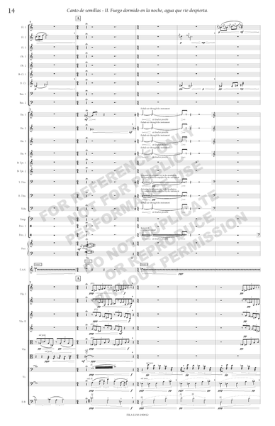 Canto de semillas, for orchestra
