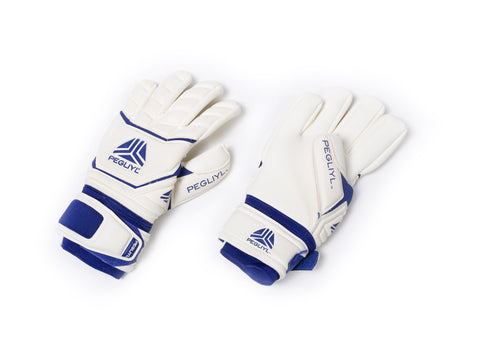 Legacy Elite NC Goalkeeper Gloves