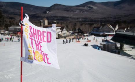 Shred The Love Flag
